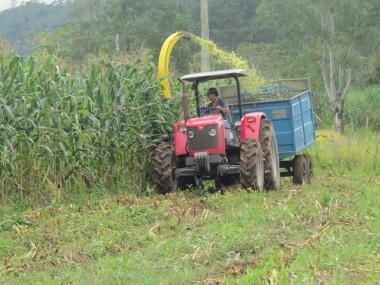 Agricultores recebem apoio da prefeitura na produção