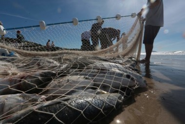Coronavírus em SC: Governo do Estado autoriza a pesca de arrasto no litoral catarinense