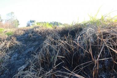 Sem chuva há dias, vegetação na BR-101 apresenta focos de queimadas