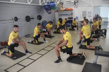 Tigre faz treinamento com atividades específicas e de força