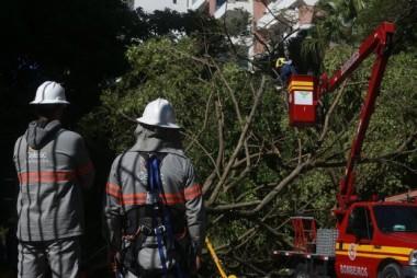 Ciclone em SC: 135 municípios catarinenses registram danos após evento climático