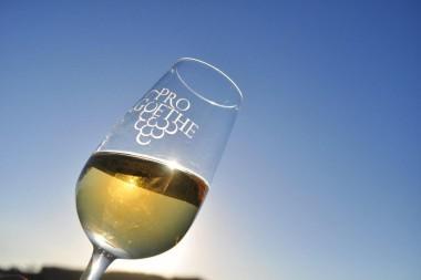 Nova Safra de vinhos Goethe ficará para história