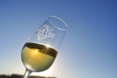 Festa do Vinho: Goethe, um produto com reconhecimento