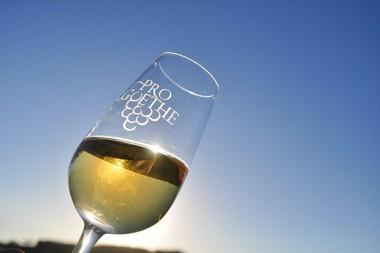 Feira Internacional do Vinho: Goethe será evidenciado na Wine South America 2018