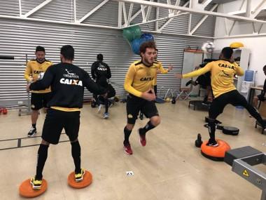Tigre realiza trabalho intenso de força na academia