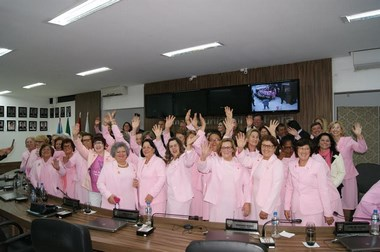 Homenagem aos 25 anos da Rede Feminina de Combate ao Câncer