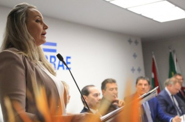 Vice-governadora destaca parcerias com setor privado