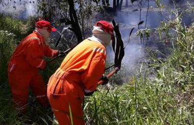 Incêndio atinge área de mata no Anel Viário