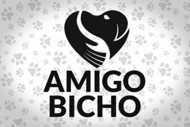 Sábado tem mutirão de castração da ONG Amigo Bicho