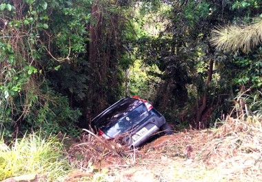 Veículo invade área de vegetação no bairro Liri