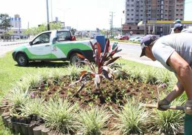Famcri substitui plantas de inverno por mudas de verão