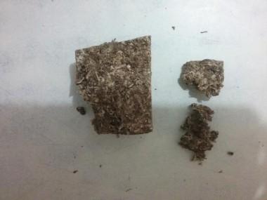 PM de Araranguá prende dois homens por tráfico de drogas