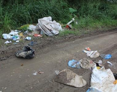 Identificado autor de descarte de resíduos às margens de rodovia