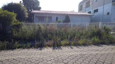 Casa abandonada incomoda vizinhos no Elizabete