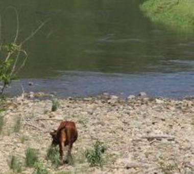 Continuidade da estiagem mantém alerta para redução do consumo de água