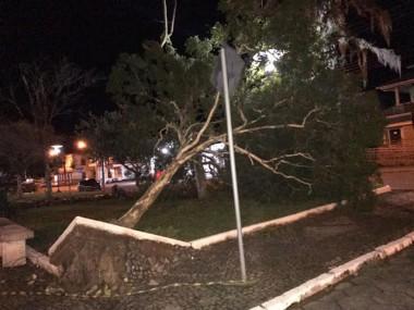 Prefeitura de Treviso contabiliza prejuízos causados pelo vento