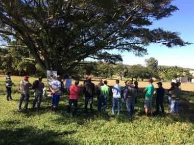 Agricultores de Criciúma são capacitados em sobressemeadura