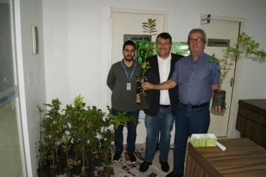 Legislativo de Içara entrega mudas de árvores