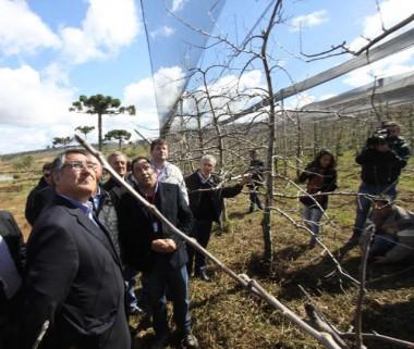 Governo do Estado e Ministério da Agricultura discutem ações