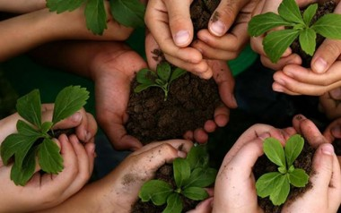 Pela construção de uma sociedade que cuida do planeta