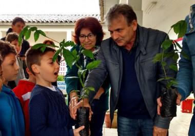 Estudantes recebem mudas de árvores em Nova Veneza