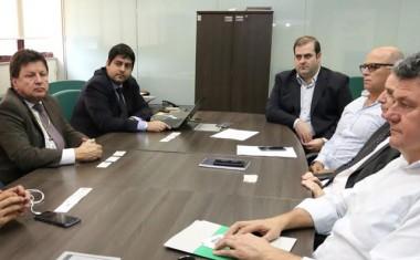 Aneel vai licitar 484 km de linhas de transmissão em SC