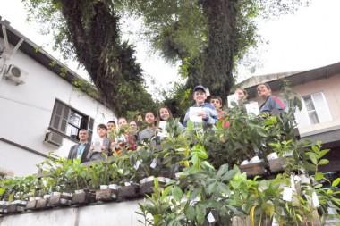 Sicoob Credija doa mudas arbóreas para escola municipal