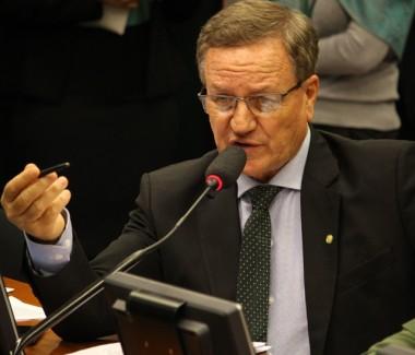 Câmara aprova projeto que regulamenta destinação de carcaças de animais