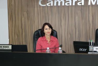 Vereadora Silvia Mendes solicita melhorias na infraestrutura de ruas