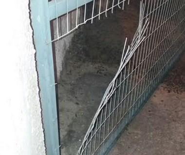 PM de Araranguá prende homem por tentativa de furto