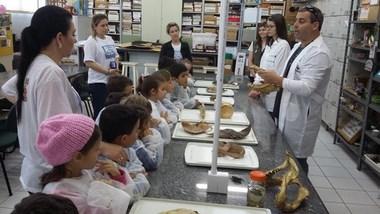 Arte e Ciência juntas no Museu de Zoologia da Unesc
