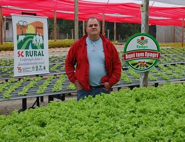 Agricultores catarinenses investem no cultivo hidropônico